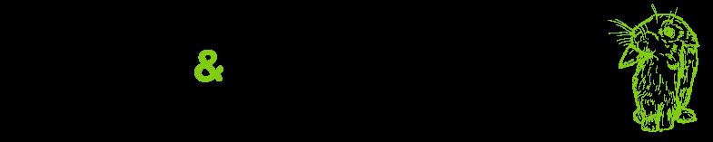 Coniglio Ariete Nano